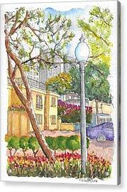 Farola In Roxbury Park, Beverly Hills, California Acrylic Print by Carlos G Groppa