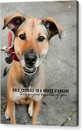Farrahs Smile Quote Acrylic Print by JAMART Photography