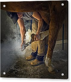 Farrier Visit - 365-46 Acrylic Print