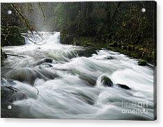 Fast-flowing Creek Acrylic Print