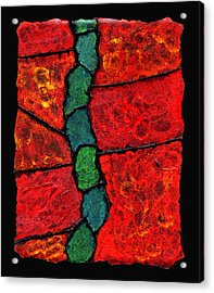 Faux Tile Painting One Acrylic Print