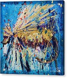 Favorite Flies 3 Acrylic Print by Jodi Monahan
