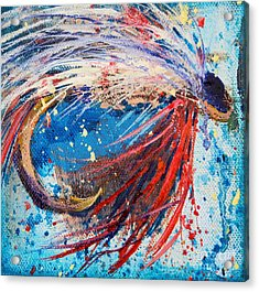 Favorite Flies 4 Acrylic Print by Jodi Monahan