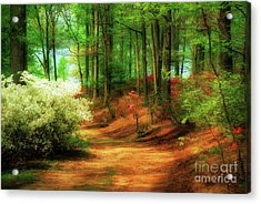 Favorite Path Acrylic Print by Lois Bryan