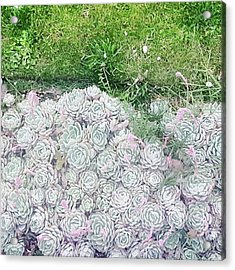 Favourites Growing Outside A Flat Round Acrylic Print by Natalie Anne