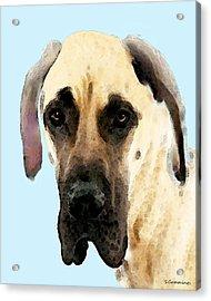 Fawn Great Dane Dog Art Painting Acrylic Print by Sharon Cummings