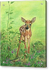 Acrylic Print featuring the painting Fawn by Jeanne Kay Juhos