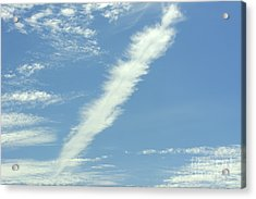 Acrylic Print featuring the photograph Feather Cloud by Susan Wiedmann