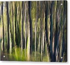 Feather Forest Acrylic Print