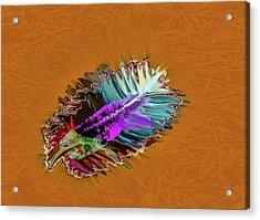Feather #h8 Acrylic Print