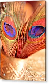 Feather Meets Sliver  Acrylic Print