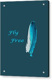Feather Of Free Flight Acrylic Print by Aliceann Carlton
