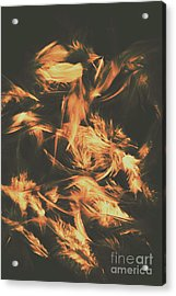Feathers And Darkness Acrylic Print