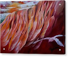 Feathers Acrylic Print by Peggy Guichu