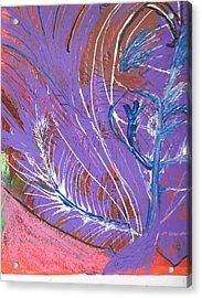 Feathery Fantasy Acrylic Print by Anne-Elizabeth Whiteway
