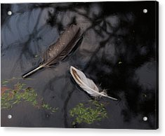 On The Surface - Digitally Painted Acrylic Print by Marilyn Wilson
