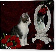 February 2006 Acrylic Print