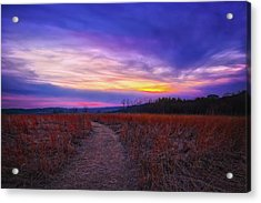 February Sunset And Path At Retzer Nature Center Acrylic Print by Jennifer Rondinelli Reilly - Fine Art Photography