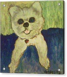 Fed Ex Doggie Acrylic Print