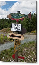 Feed The Trout Acrylic Print by Suzanne Gaff