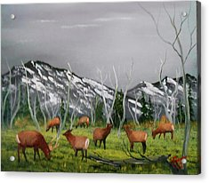 Acrylic Print featuring the painting Feeding Elk by Al Johannessen