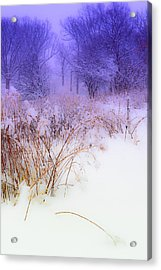 Feel Of Cold Land Acrylic Print