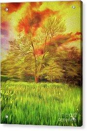 Feel The Love Acrylic Print
