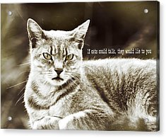 Feline Moment Quote Acrylic Print by JAMART Photography