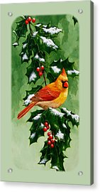 Female Cardinal And Holly Phone Case Acrylic Print by Crista Forest