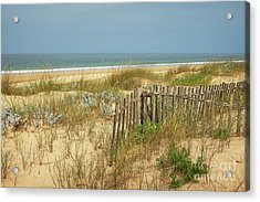 Fence In The Dunes Acrylic Print by Carlos Caetano