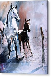 Fence Line Horses Acrylic Print
