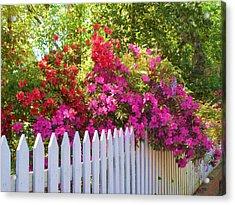 Fence Of Beauty Acrylic Print