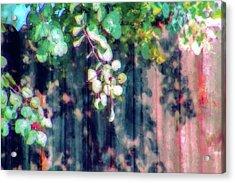Fence Painting Acrylic Print