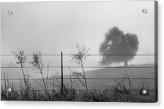 Fenced In Acrylic Print by Joseph Smith