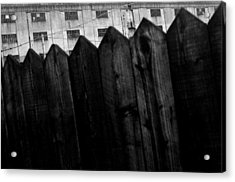 Fenced In Or Out Acrylic Print by Jez C Self