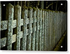 Fenced In Acrylic Print by Sebastian Musial
