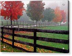 Fenceline And Wet Road, Autumn Color Acrylic Print