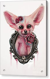 Acrylic Print featuring the drawing Fennec Fox by Sheena Pike