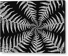Fern Abstract Acrylic Print by Edward Myers
