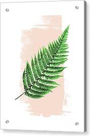 Fern Leaf On Pink Acrylic Print