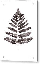 Fern Leaf Watercolor Art Print Acrylic Print