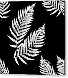 Acrylic Print featuring the mixed media Fern Pattern Black And White by Christina Rollo