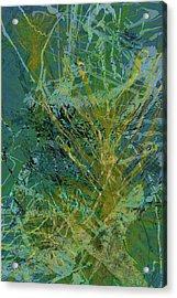 Fern Series 36 Acrylic Print