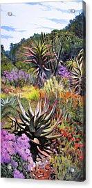 Fernkloof Fynbos Acrylic Print