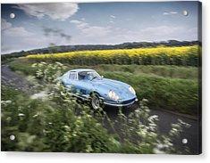 Ferrari 275 Acrylic Print