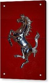 Ferrari Stallion Acrylic Print by Rob Hans