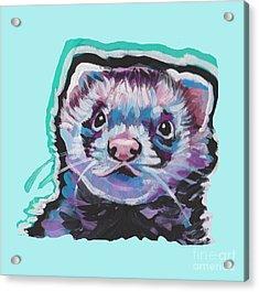 Ferret Fun Acrylic Print
