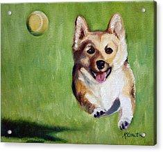 Fetch Acrylic Print by Mary Sparrow