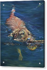 Fetching The Stick Acrylic Print