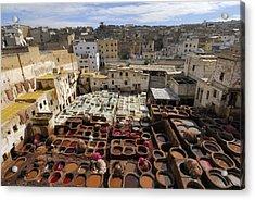 Fez Morocco Acrylic Print by Liz Pinchen